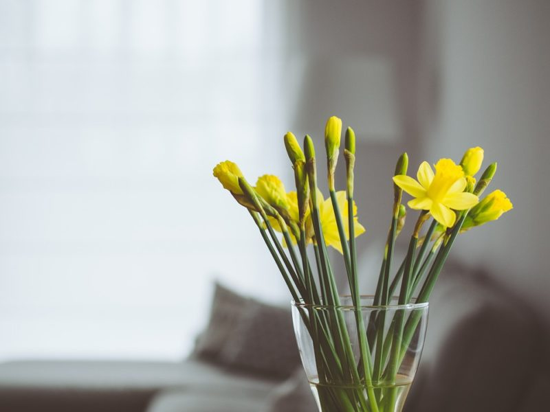 EASY WAYS TO MAKE YOUR HOME SMELL GREAT